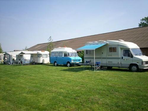 camping_wetland