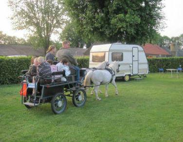 camping het scharrelnest