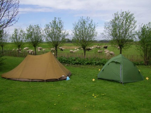 Camping It Dreamlan