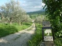 Mini boerderij camping Rocca di Sotto